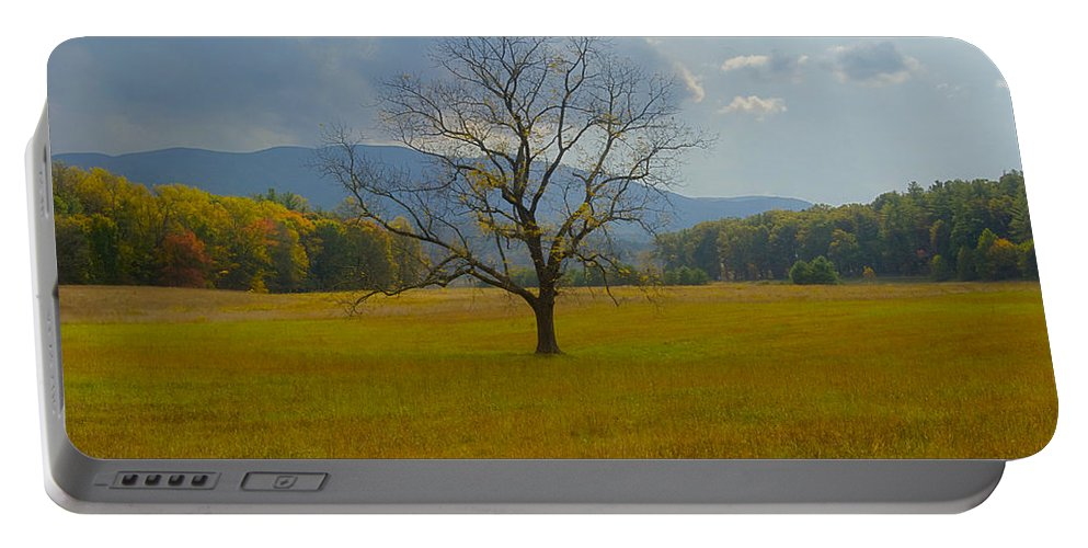 Landscape Portable Battery Charger featuring the photograph Dare To Stand Alone by Michael Peychich