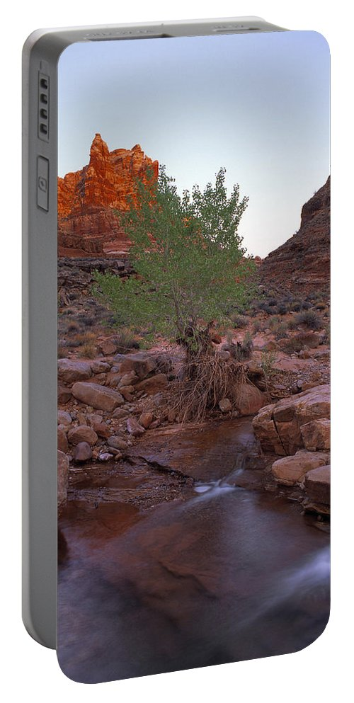 Dark Canyon Wilderness Portable Battery Charger featuring the photograph Dark Canyon Creek by Leland D Howard
