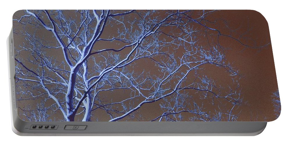 Tree Portable Battery Charger featuring the photograph Dark Woods by Betty Northcutt