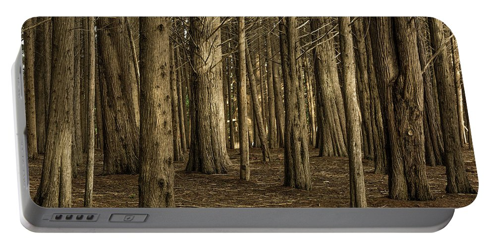 Landscape Portable Battery Charger featuring the photograph Dark Woods by Javier Flores