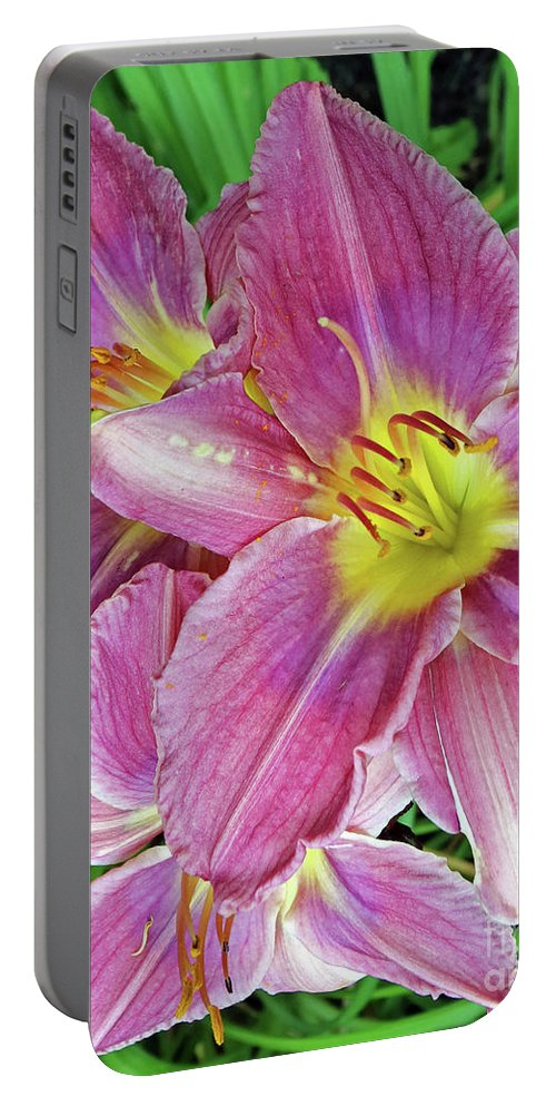 Flowers Portable Battery Charger featuring the photograph Day Lilys by Steve Gass