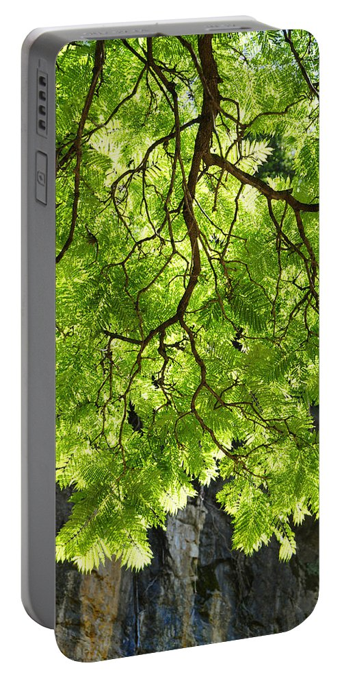 Skiphunt Portable Battery Charger featuring the photograph Daydream by Skip Hunt