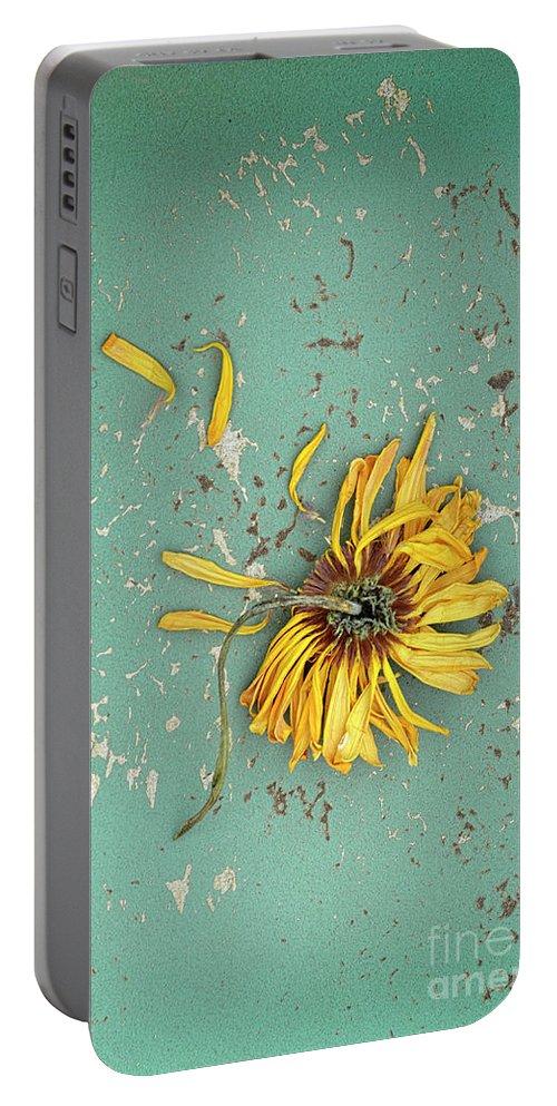Flower Portable Battery Charger featuring the photograph Dead Suflower by Jill Battaglia
