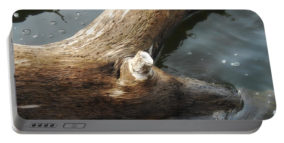 Wood Portable Battery Charger featuring the photograph Dead Wood by Donna Blackhall