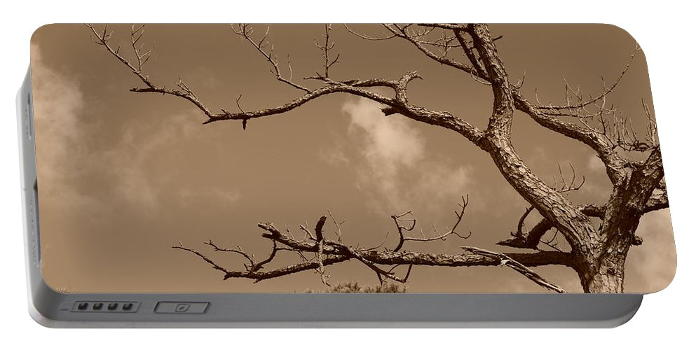 Sepia Portable Battery Charger featuring the photograph Dead Wood by Rob Hans