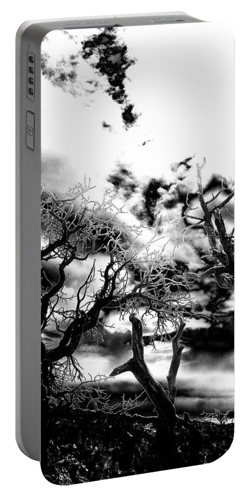 Tree Portable Battery Charger featuring the photograph Deadwood by Charleen Treasures