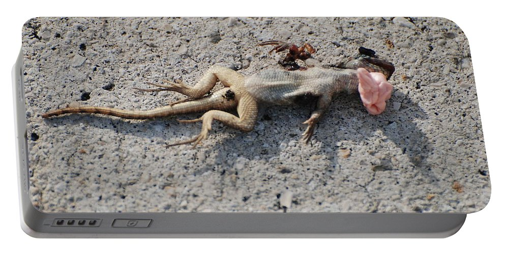 Lizards Portable Battery Charger featuring the photograph Death By Gum by Rob Hans