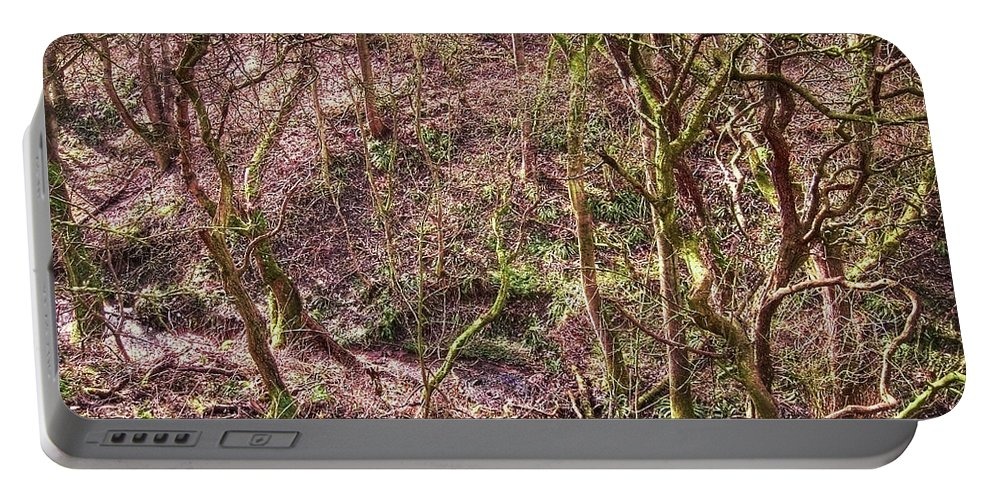 Abstract Portable Battery Charger featuring the photograph Deep In Woods by Svetlana Sewell