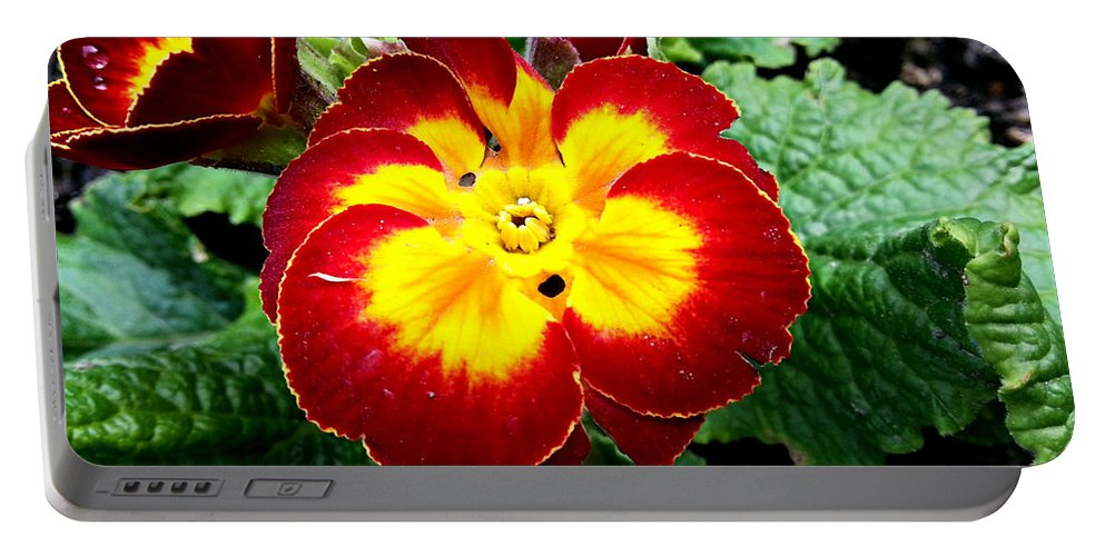 Nature Portable Battery Charger featuring the photograph Deep Red Bright Yellow by Wayne Henry