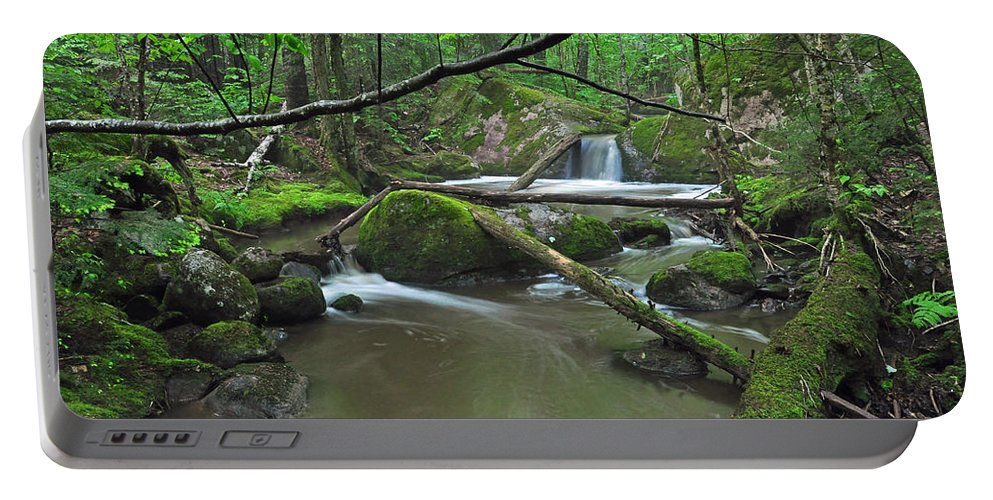 Stream Portable Battery Charger featuring the photograph Deep Woods Stream 2 by Glenn Gordon