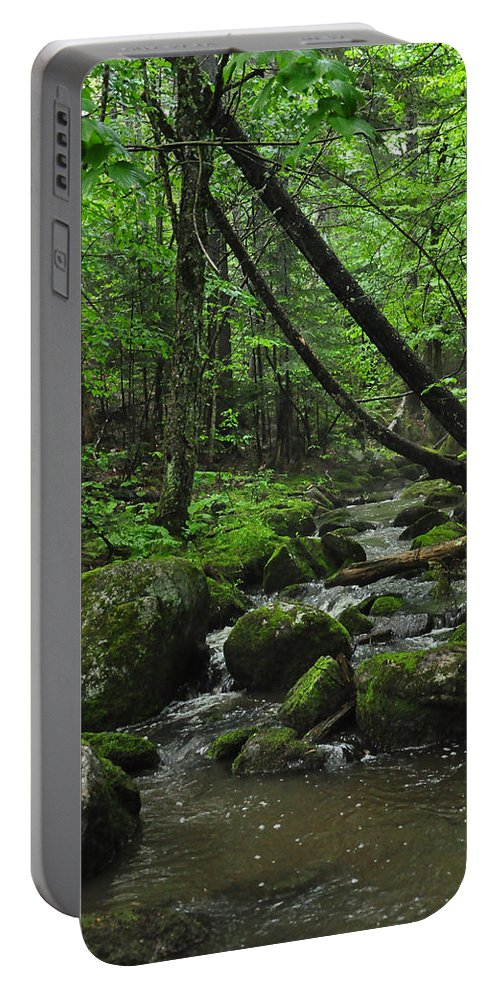 Stream Portable Battery Charger featuring the photograph Deep Woods Stream 3 by Glenn Gordon
