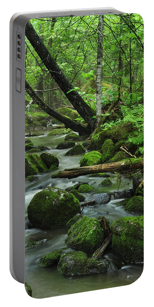 Stream Portable Battery Charger featuring the photograph Deep Woods Stream by Glenn Gordon