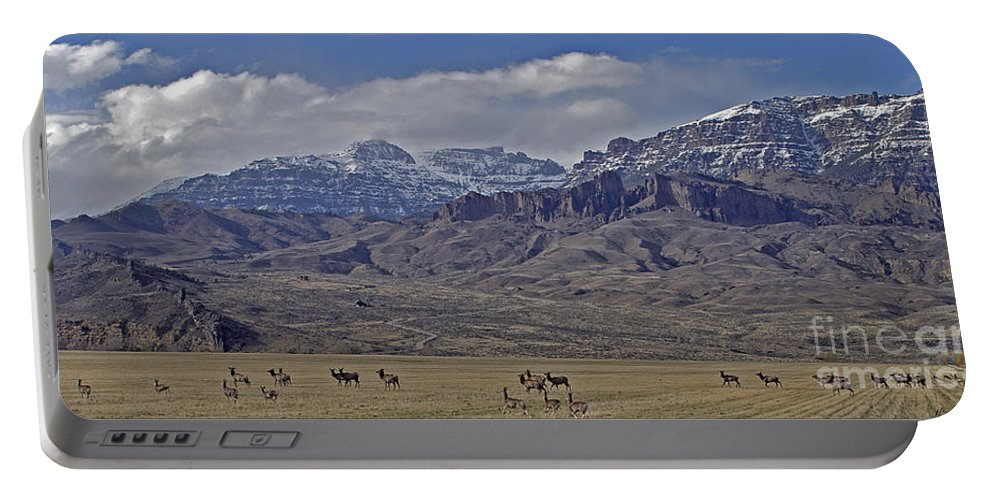 Deer And Elk Herd Portable Battery Charger featuring the photograph Deer Elk And Jim Mountain-signed by J L Woody Wooden