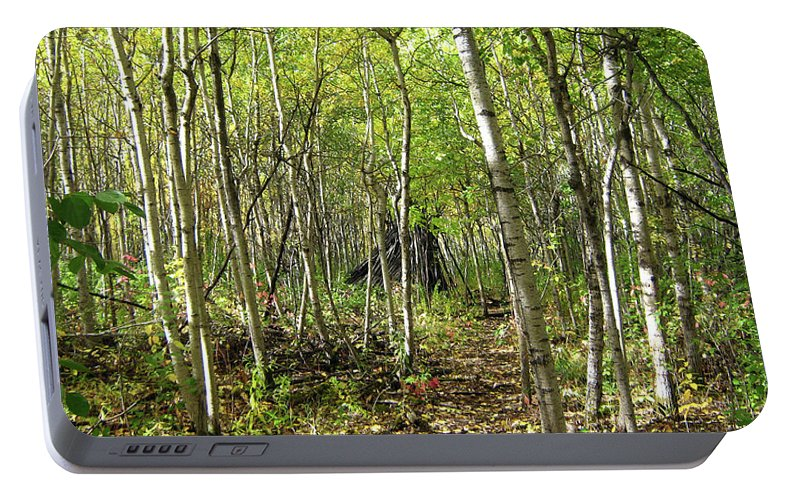 Silver Birch Portable Battery Charger featuring the photograph Deer Hide by Emma Frost