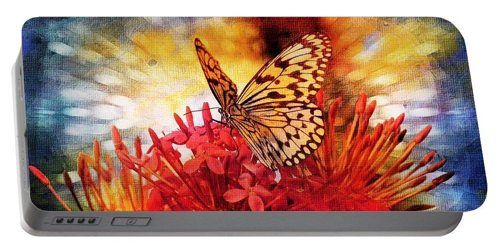 Butterfly Portable Battery Charger featuring the photograph Delicate Beauty by Aaron Berg