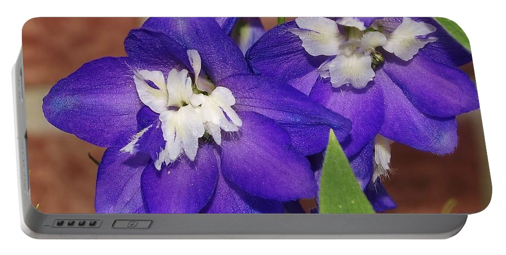 Flowers Portable Battery Charger featuring the photograph Delphinium by Denise Irving