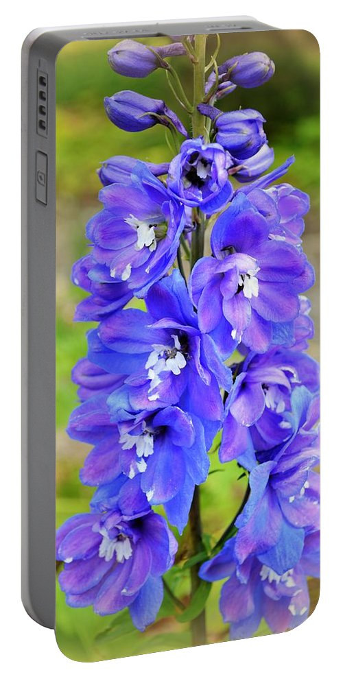 Flower Portable Battery Charger featuring the photograph Delphiniums by Linda Covino