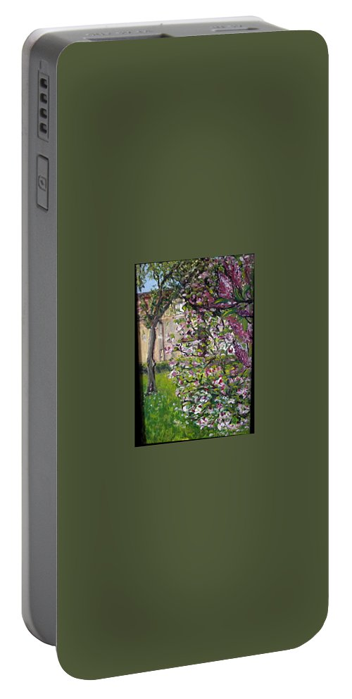Landscape Portable Battery Charger featuring the painting Dentist Flowers by Pablo de Choros