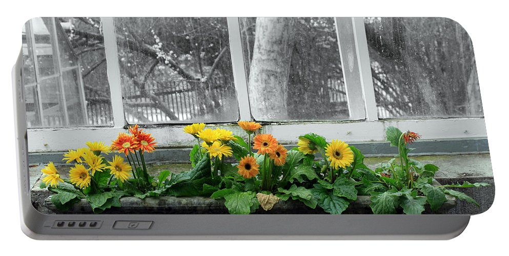 Flowers Portable Battery Charger featuring the photograph Depression by Munir Alawi