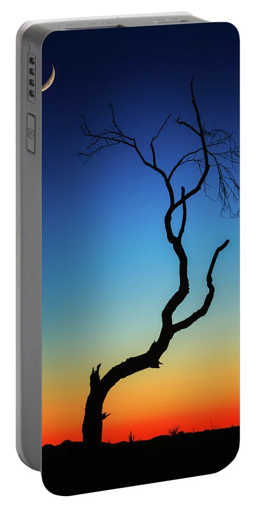 Arizona Portable Battery Charger featuring the photograph Desert Dreams by Rick Furmanek