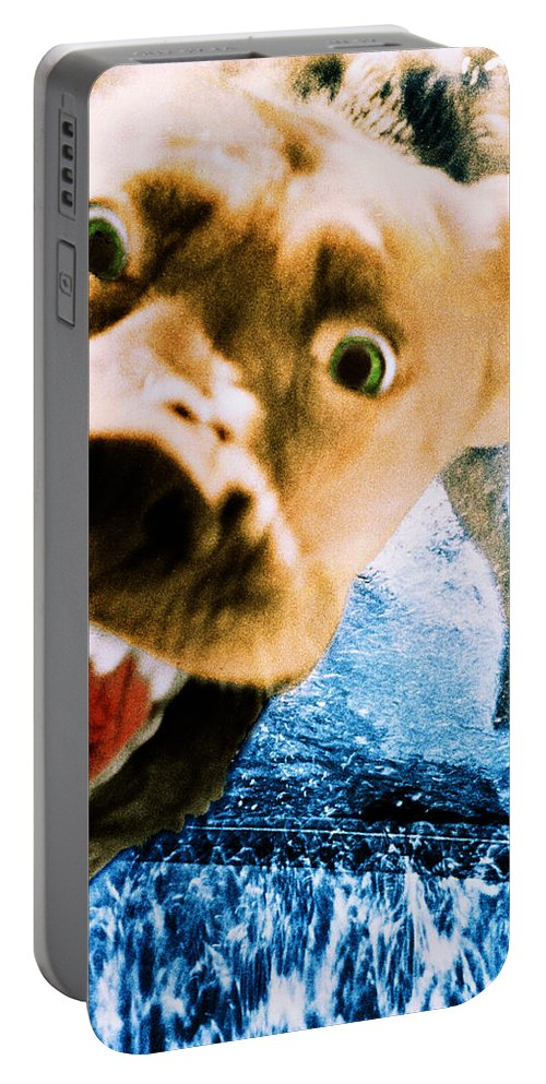 Dog Portable Battery Charger featuring the photograph Devil Dog Underwater by Jill Reger