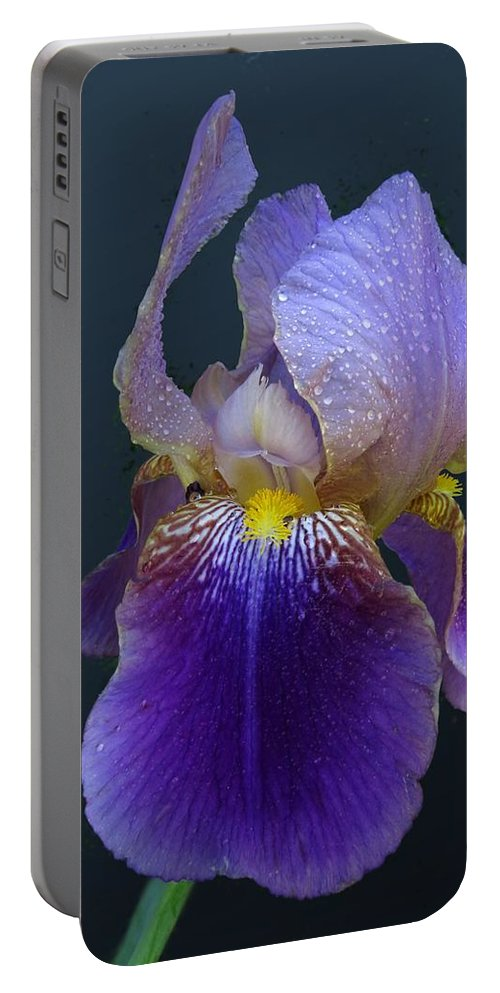 Iris Portable Battery Charger featuring the photograph Dew Morning by I'ina Van Lawick