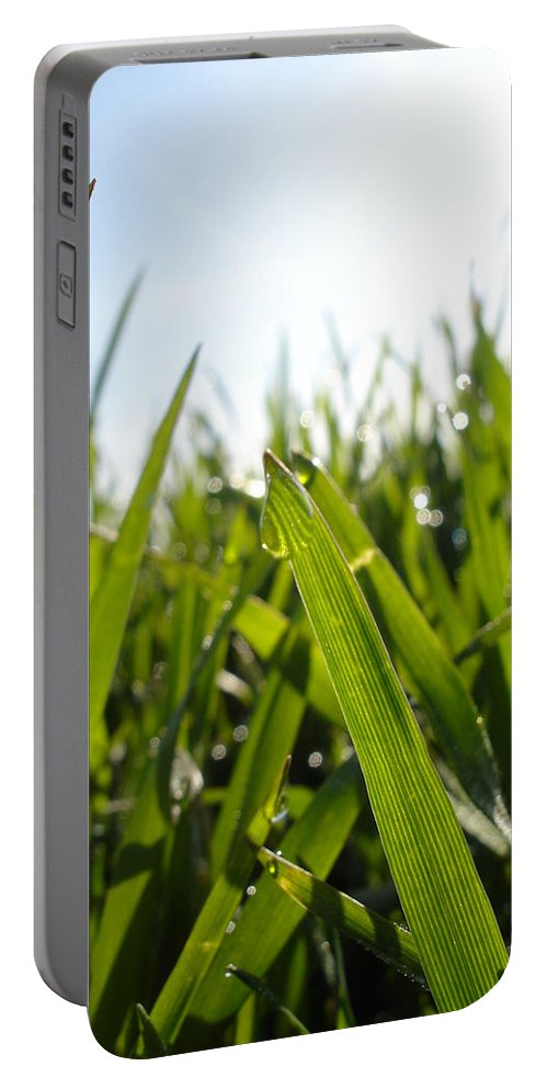 Flora Portable Battery Charger featuring the photograph Dewdrops On New Wheat by Susan Baker