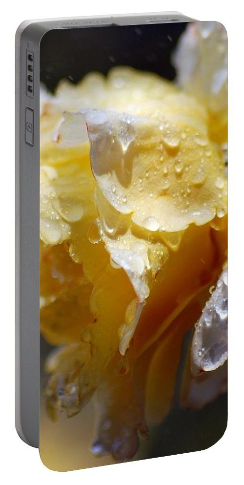 Rose Portable Battery Charger featuring the photograph Dewy Yellow Rose 2 by Amy Fose