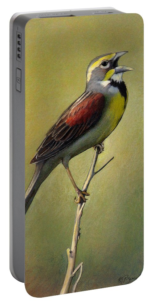 Birds Portable Battery Charger featuring the drawing Dickcissel Summer Song by Bruce Morrison