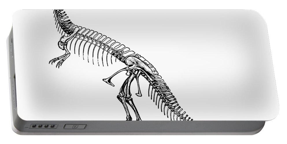 Ceratosaur Portable Battery Charger featuring the photograph Dinosaur: Ceratosaurus by Granger