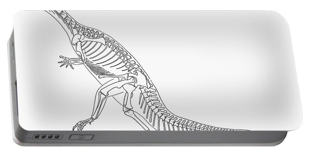 Extinct Portable Battery Charger featuring the photograph Dinosaur: Plateosaurus by Granger
