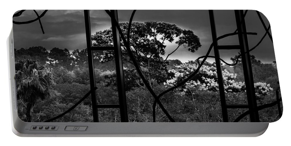 Portable Battery Charger featuring the photograph Disney Animal Kingdom Lodge I by Susan Molnar