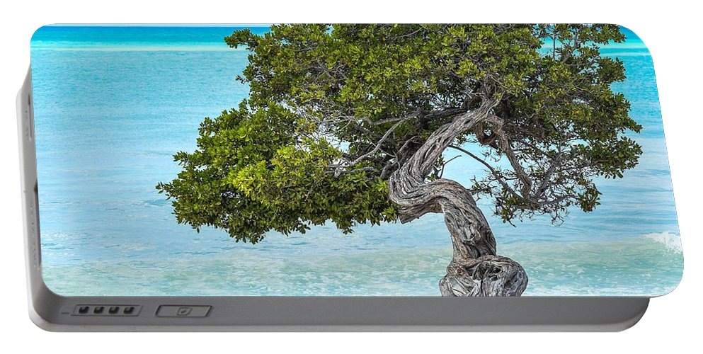 Tree Portable Battery Charger featuring the photograph Divi-divi Aruba by Janal Koenig