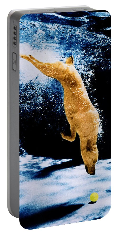 Pet Portable Battery Charger featuring the photograph Diving Dog Underwater by Jill Reger