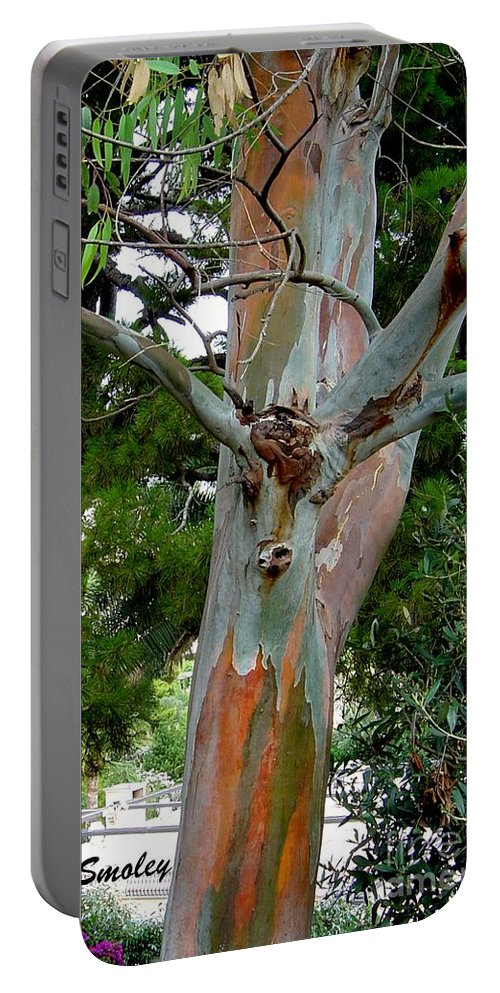 Deer Portable Battery Charger featuring the photograph Do You See What I See by Joanne Smoley
