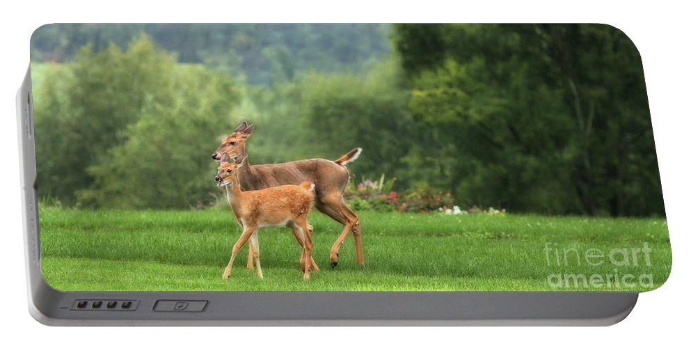 Animal Portable Battery Charger featuring the photograph Doe And Fawn by Angela Rath