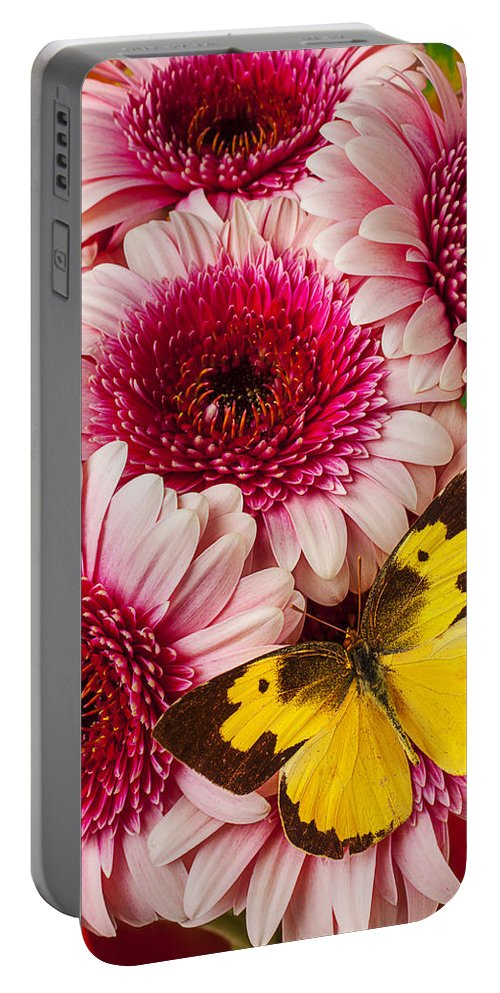 Dog Face Butterfly Butterflies Portable Battery Charger featuring the photograph Dog Face Butterfly On Pink Mums by Garry Gay