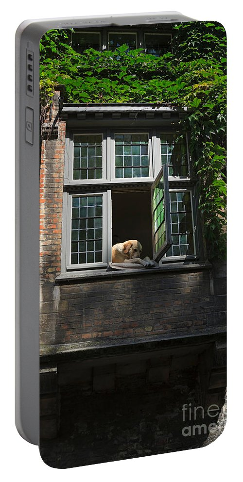 Dog Portable Battery Charger featuring the photograph Dog In A Window Above The Canal In Bruges Belgium by Louise Heusinkveld