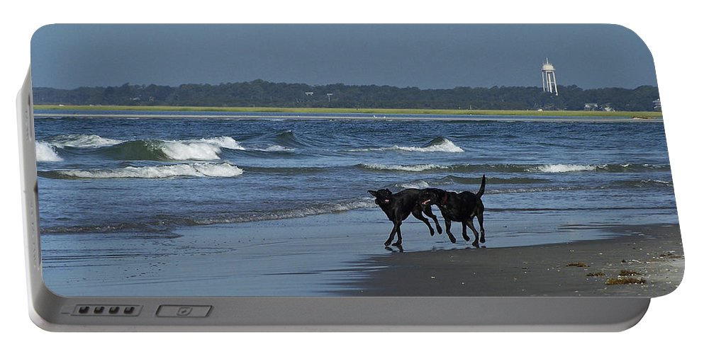 Dog Portable Battery Charger featuring the photograph Dogs On The Beach by Teresa Mucha