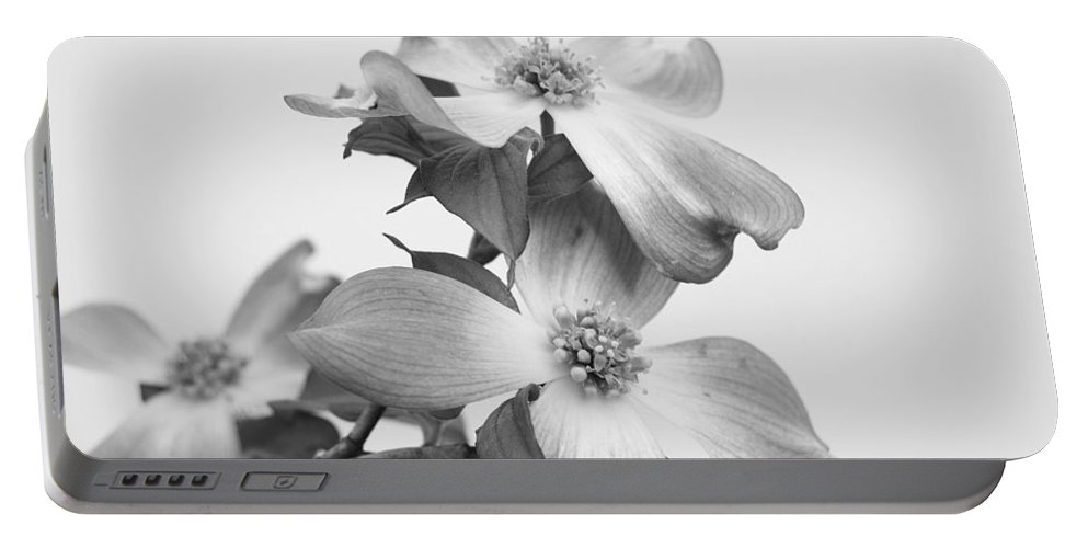 Dogwood Portable Battery Charger featuring the photograph Dogwood Bloom by Todd Hostetter