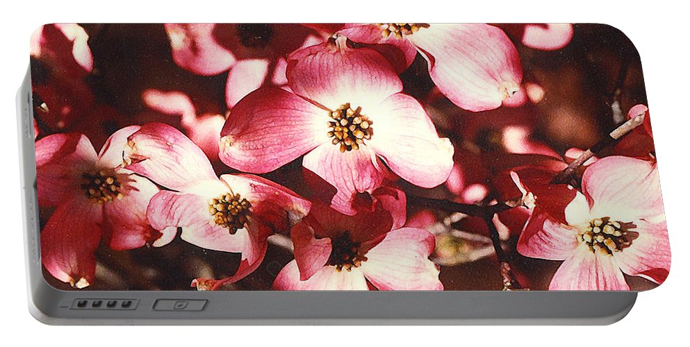 Dogwood Portable Battery Charger featuring the photograph Dogwood Harmony by Nancy Mueller