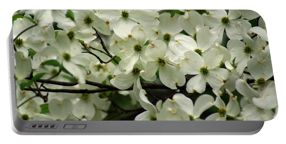 Dogwood Portable Battery Charger featuring the photograph Dogwoods by Marty Koch