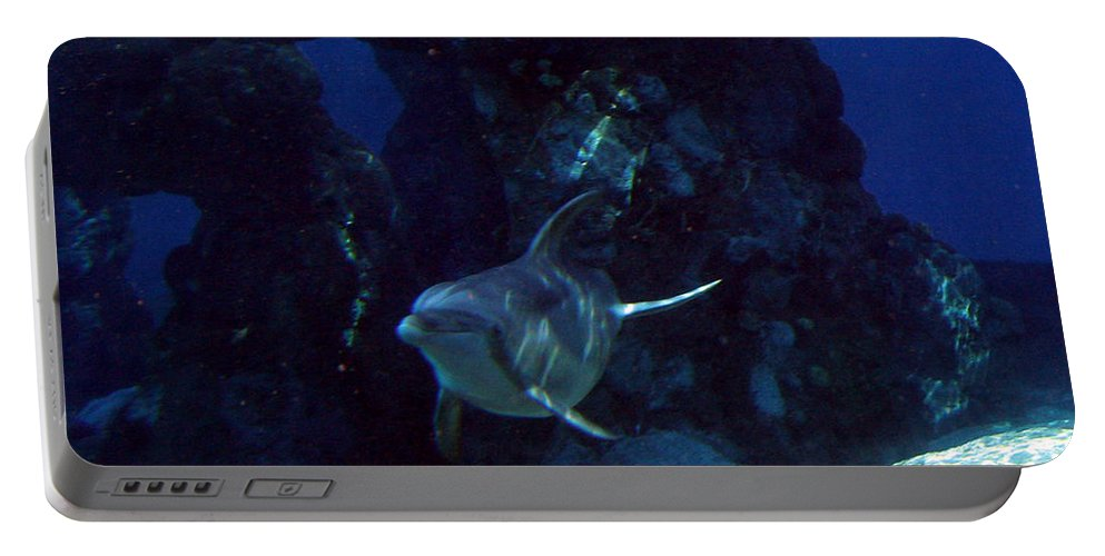 Dolphin Fish Aquatic Life Water Aquarium Sea Sandy Shore Rock Reef Portable Battery Charger featuring the photograph Dolphin by Andrea Lawrence