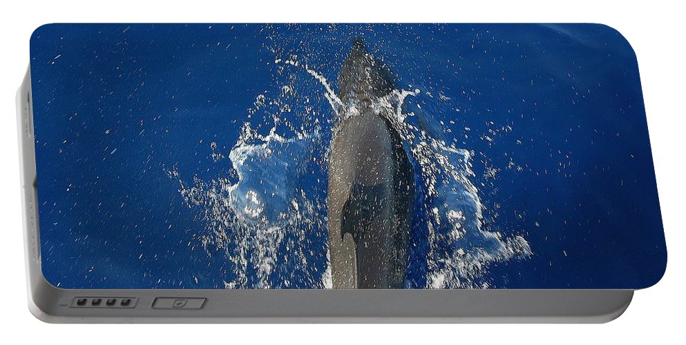 Dolphin Portable Battery Charger featuring the photograph Dolphin by J R Seymour