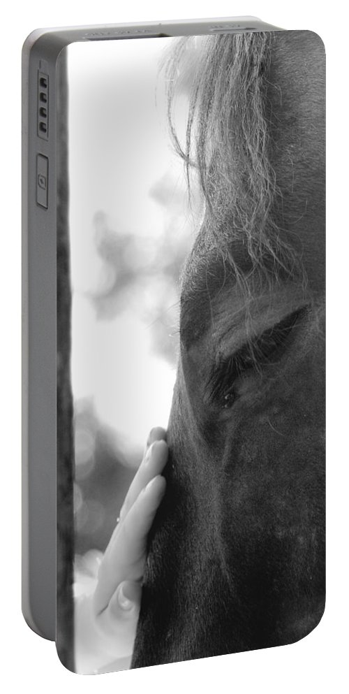 Horse Portable Battery Charger featuring the photograph Don't Be Afraid by Donna Blackhall