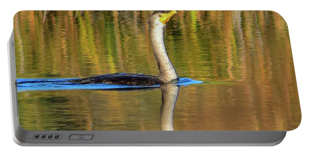 Cormorant Portable Battery Charger featuring the photograph Double-crested Cormorant - 2 by Alan C Wade