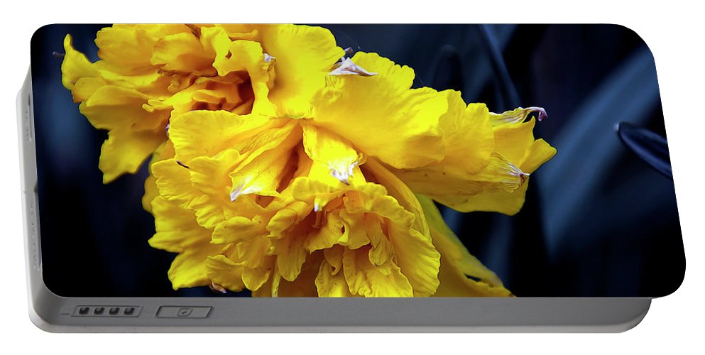 Spring Portable Battery Charger featuring the photograph Double Daffodil by Svetlana Sewell