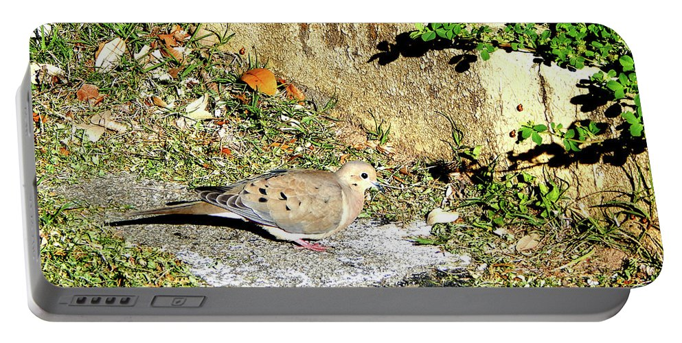 Dove Portable Battery Charger featuring the photograph Dove #9225 by Barbara Tristan