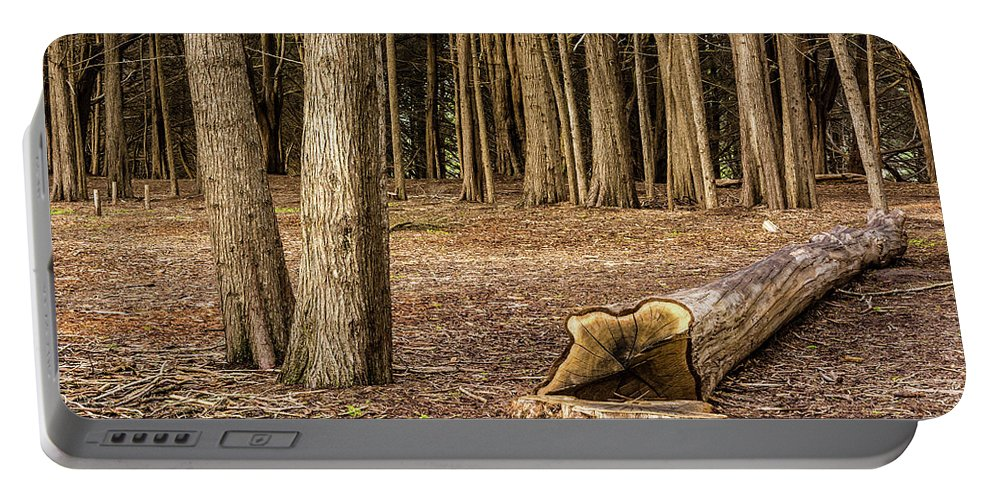 Landscape Portable Battery Charger featuring the photograph Down Tree by Javier Flores