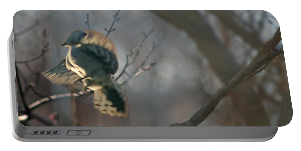 Nature Portable Battery Charger featuring the photograph Downey Woodpecker by Steve Karol